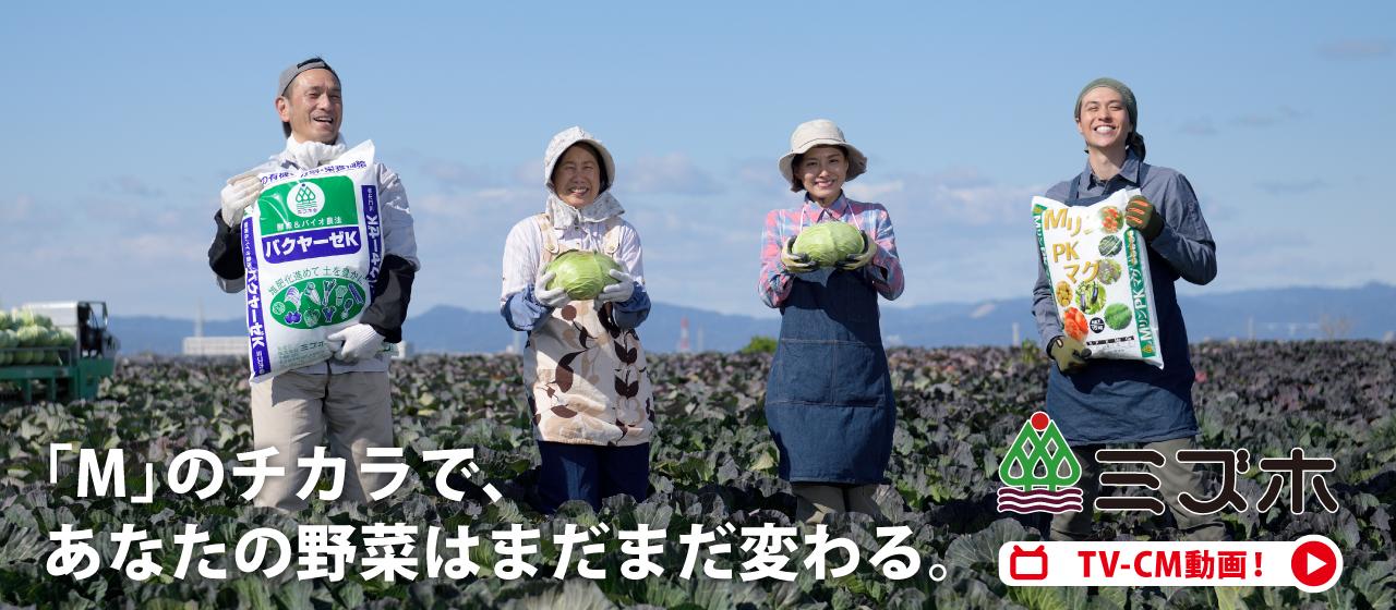 ミズホMリンチャンネル 「野菜のために人のために 家庭」篇 15 秒