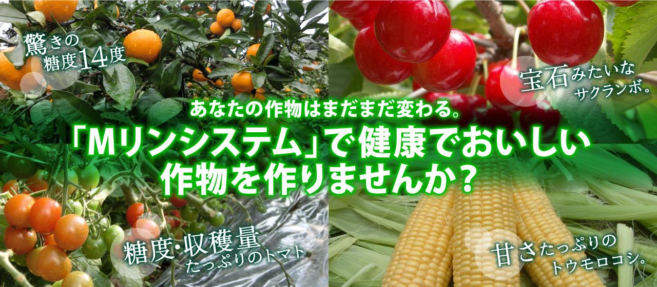 「Mリンシステム」で健康でおいしい作物を作りませんか?
