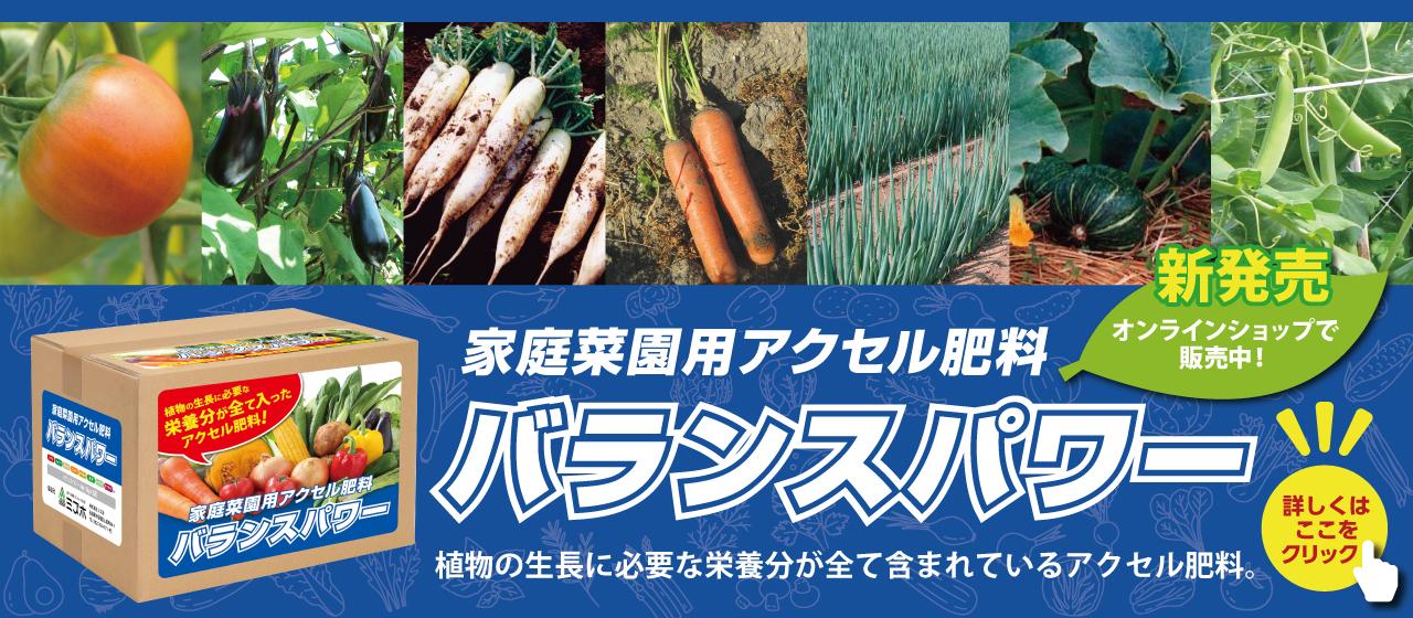 家庭菜園用アクセル肥料 バランスパワー