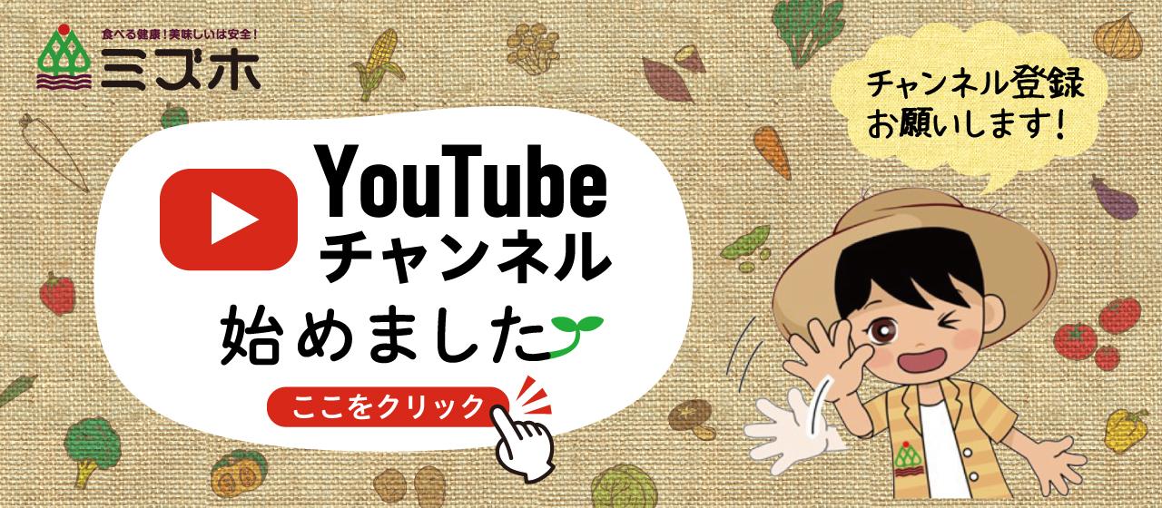 Youtubeチャンネル【ミズホMリンチャンネル】始めました。チャンネル登録おねがいします。