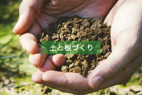 土と根づくり
