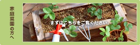 家庭菜園の方へ